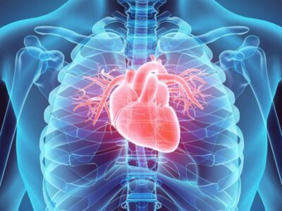 Ziekte in de kijker: Endocarditis en pericarditis